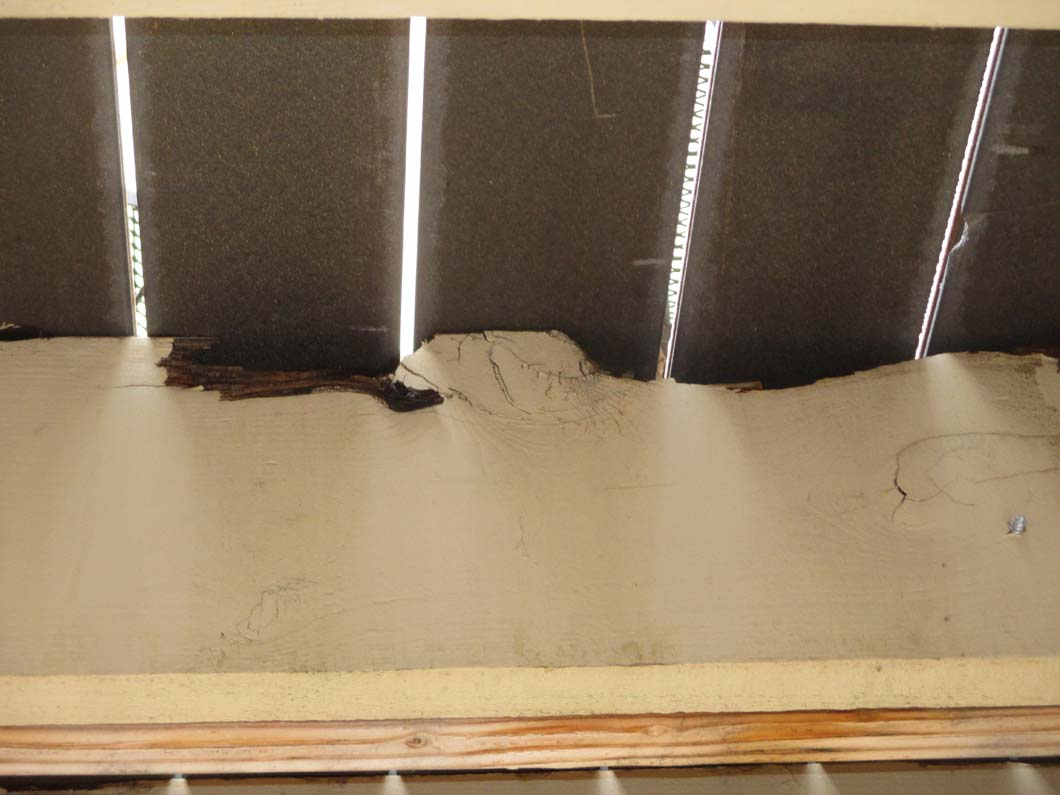 Rotted joists under deck